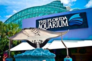 florida_aquarium